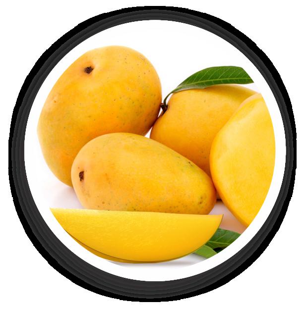 Mango Alphanso