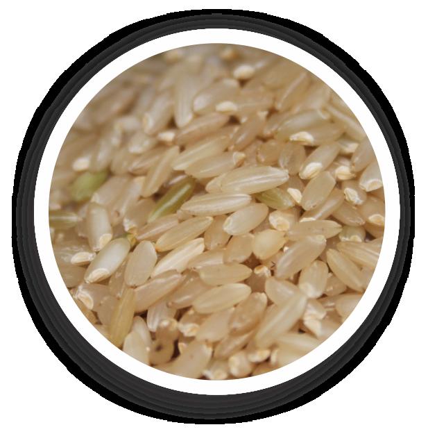 Organic Medium Grain Brown Rice