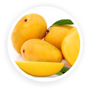 Organic Mango Alphanso