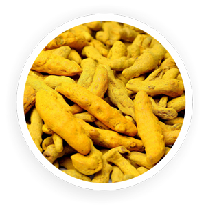 Organic Turmeric Whole