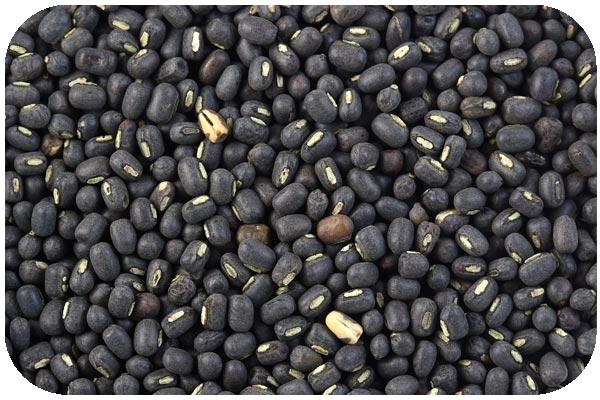 organic-black-gram-whole