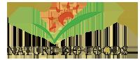 nbfl-logo-nature-bio-foods-logo